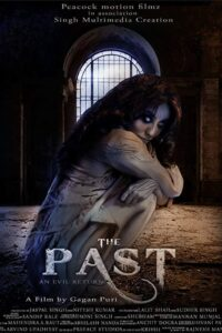 The Past Download Full Hindi Movie 1080p 720ph